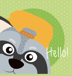 Raccoon cute animal cartoon card vector