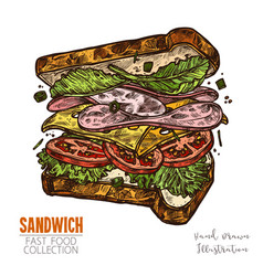 Sandwich with ham cheese salad tomatoes vector