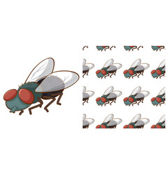 seamless background design with housefly vector image