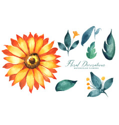 Sunflower watercolor flower and leaves collection vector