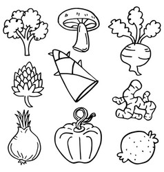 Doodle of vegetable object art vector