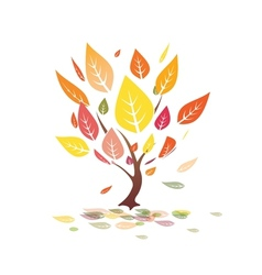 autumn leaves yellow tree vector image vector image