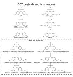 DDT pesticide and its alanogues vector image