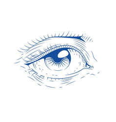eye vintage engraving vector image