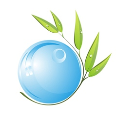 bamboo with blue water drop vector image
