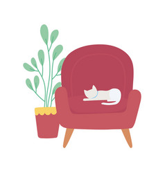 cat in chair and potted plant isolated icon white vector image