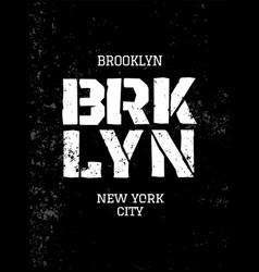 District new york brooklyn vector