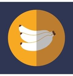 Fruit healthy food icon vector