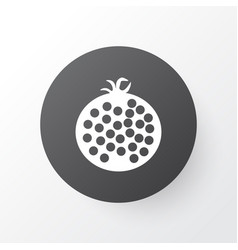 Garnet icon symbol premium quality isolated vector