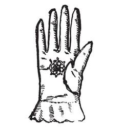 georgian glove vintage engraving vector image