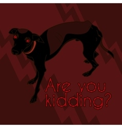 Image With Angry Italian Greyhound vector