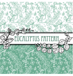 outline elegant eucalyptus seamless pattern vector image