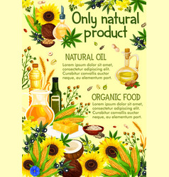 Plants and herbs olive oil vector