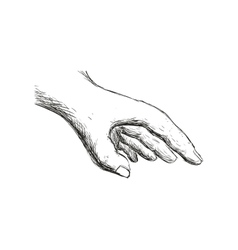 Sketch hand icon Gesture hand design vector image