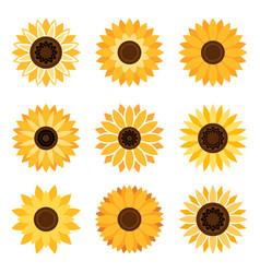 sunflower emblem set vector image vector image