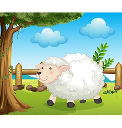 A sheep inside the fence vector image vector image