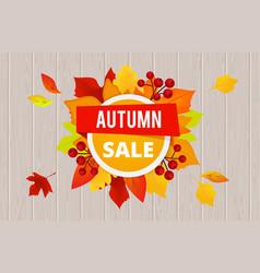 autumn sale banner template sale flyer vector image