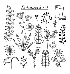 Botanical-pattern-set vector
