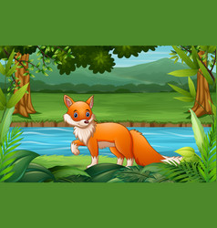 fox cartoon walking in nature vector image