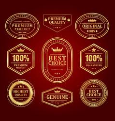 gold frames premium labels and logos set vector image