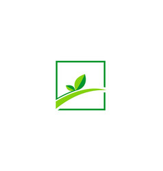 green leaf square logo vector image