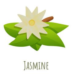 Jasmine flower icon cartoon style vector