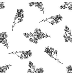seamless pattern with black and white wax flower vector image