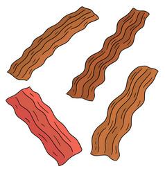 Set of bacon vector