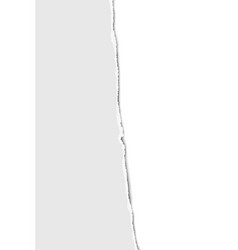 Teared from top to bottom vertical sheet white vector