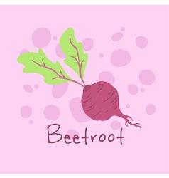 Vegetable Beetroot vector image vector image