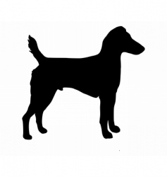 westfalen terrier vector image