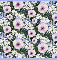 white poppy and alyssum flowers vector image