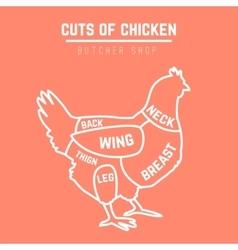 Cuts of chicken butcher diagram vector image