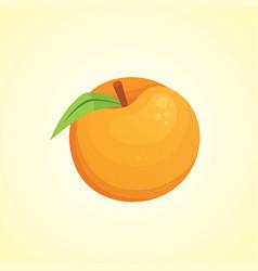 peach isolated fresh fruit vector image
