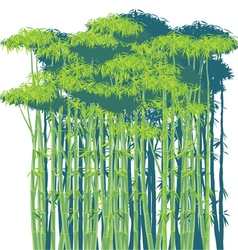 bamboo thickets vector image