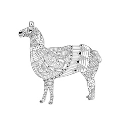 lama Coloring for adults vector image