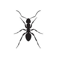 Ant icon vector
