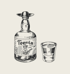 bottle tequila glass shot and label for retro vector image