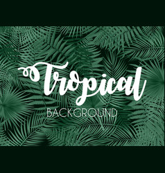 colorful naturalistic tropical background from the vector image