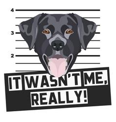 Mugshot police photo black labrador vector
