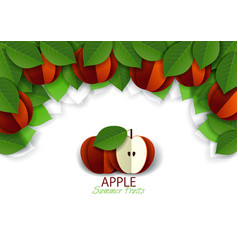 paper cut red apple fruit background frame vector image