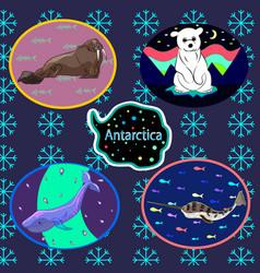 antarctic set vector image vector image