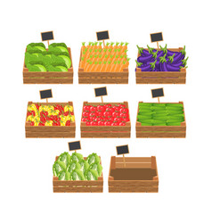 crates with fresh vegetables vector image