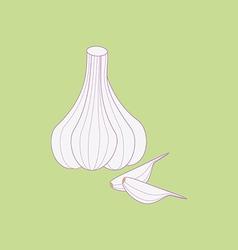 Garlic vegetable icon vector image vector image