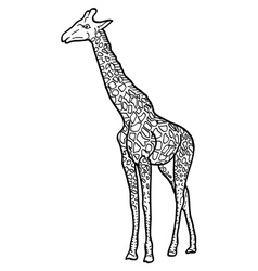 Sketch of a high African giraffe on white vector image vector image