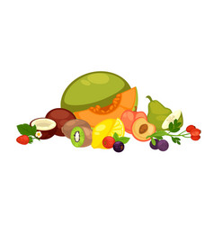 exotic tropical fruits and forest berries isolated vector image vector image