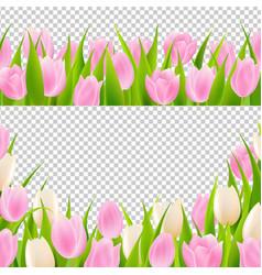 spring pink tulip borders set vector image vector image
