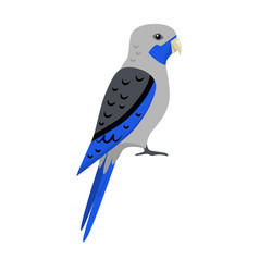 Blue rosella parrot icon in flat style vector