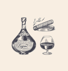 cognac bottle and glass goblet and cigar engraved vector image