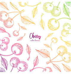 colorful frame with cherry healthy food vector image
